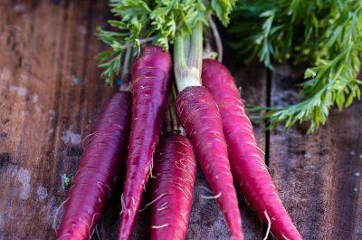 cà rốt tím