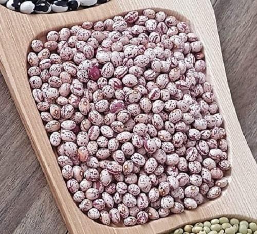 hạt đậu cúc