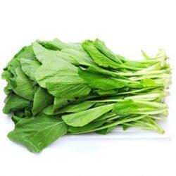 giá hạt giống cải ngọt