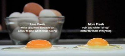 kiểm tra độ mới của trứng bằng đập trứng
