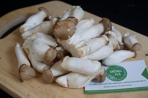 Hình ảnh sản phẩm nấm đùi gà bao tử đóng gói hút chân không 200gr