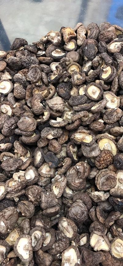 nấm hương mũ khô 2
