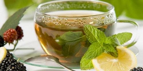 uống trà bạc hà trị ợ hơi, đầy bụng, khó tiêu