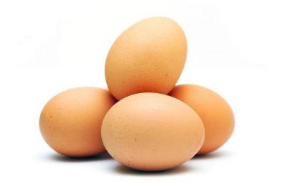 trứng gà omega 3