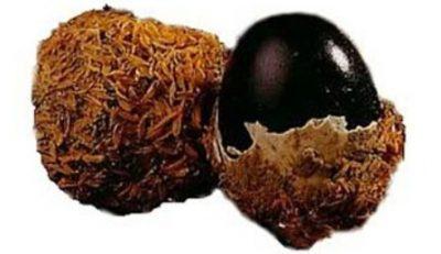 trứng vịt bắc thảo bọc trấu