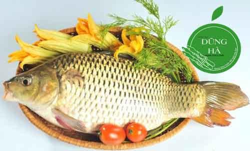 Cá chép>0.8kg