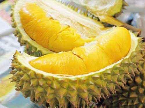 Tổng hợp những loại trái cây đặc sản Miền Tây ngon khó cưỡng lại