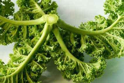 Thành phần dinh dưỡng tuyệt vời của cải xoăn mà bạn nên biết