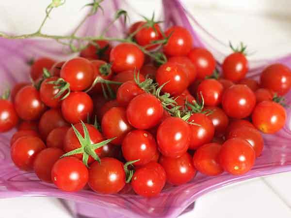 Hạt giống cà chua bi gói 20 hạt