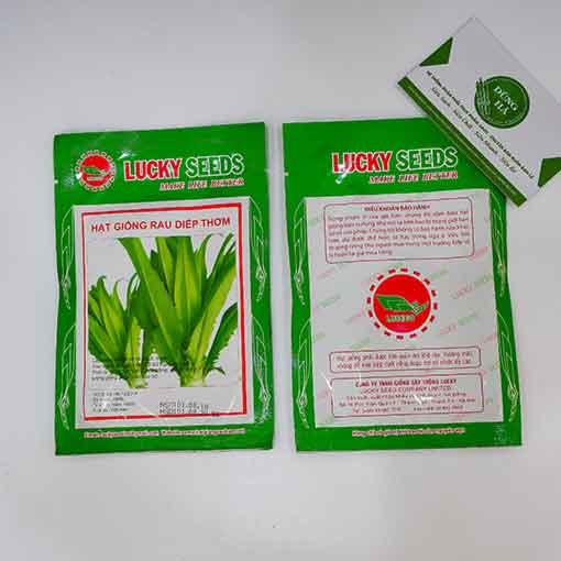 Hạt giống rau diếp thơm gói 5g