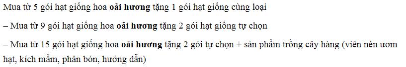 oai huong 2