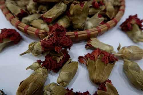 Trà Hoa Cẩm Chướng Sấy Khô