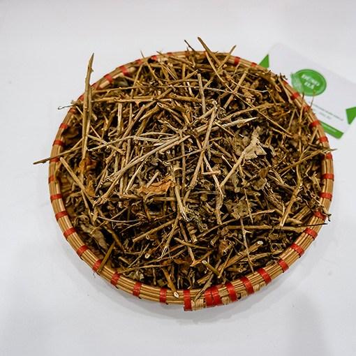 ca-gai-leo (1)