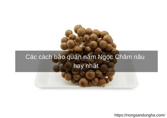 https://nongsandungha.com/wp-content/uploads/bao-quan-ngoc-cham.jpg