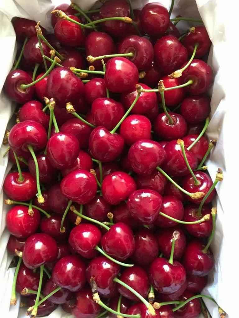 cherry bao quan