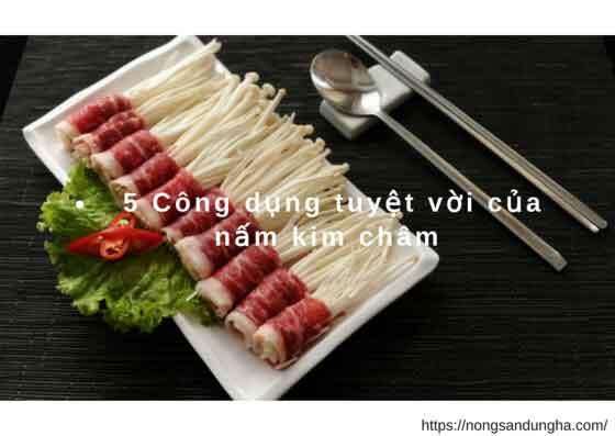 https://nongsandungha.com/wp-content/uploads/cong-dung-nam-kim-cham.jpg