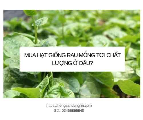 https://nongsandungha.com/wp-content/uploads/mua-hat-giong-mong-toi-2018-e1551404464419.png