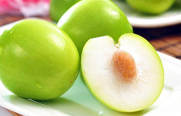 Mua táo ninh thuận sạch ở đâu tại Hà Nội